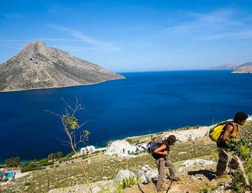 Women Only Climbing Course