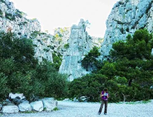 France Winter Climbing Course_5